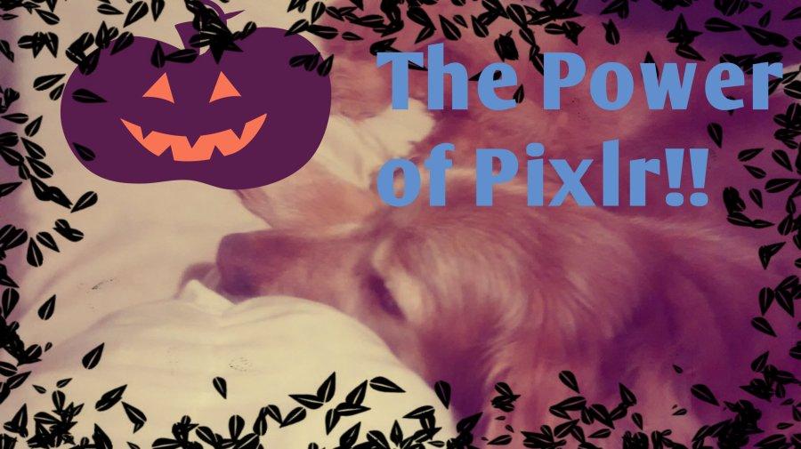 halloween-pixlr-experiment